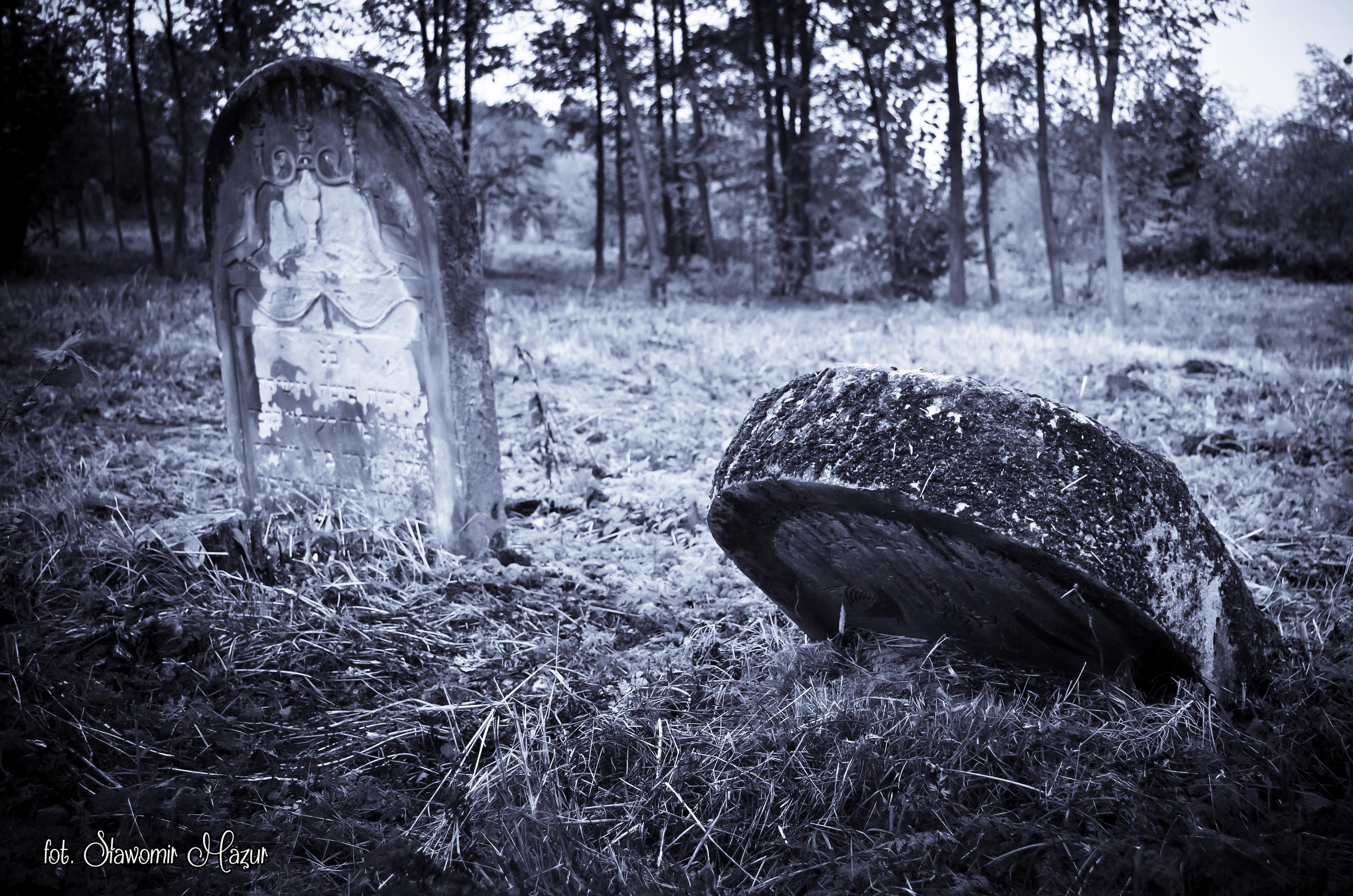 Jewish cemetery Bodzentyn